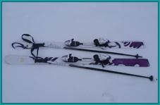 Аренда: Горные лыжи (без ботинок + палки)