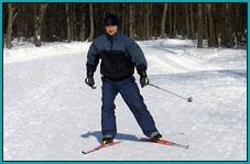 Аренда: Беговые лыжи для конькового хода (SNS)