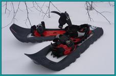 Аренда: Снегоступы для прогулок по лесу